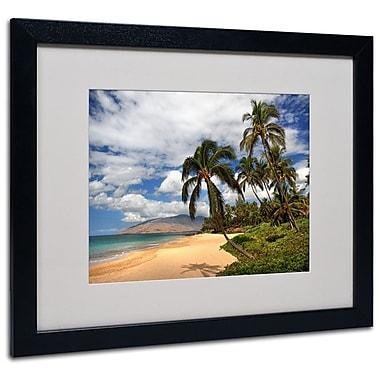 Trademark Fine Art 'Kamaole Tropical' 16