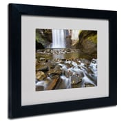 "Trademark Fine Art 'Looking Glass Falls' 11"" x 14"" Black Frame Art"