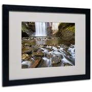 "Trademark Fine Art 'Looking Glass Falls' 16"" x 20"" Black Frame Art"