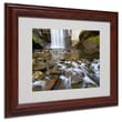 Trademark Fine Art 'Looking Glass Falls' 11in. x 14in. Wood Frame Art
