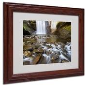 "Trademark Fine Art 'Looking Glass Falls' 11"" x 14"" Wood Frame Art"