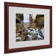 "Trademark Fine Art 'Looking Glass Falls' 16"" x 20"" Wood Frame Art"