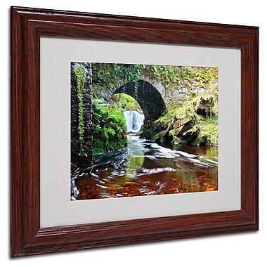 Trademark Fine Art 'Lush River' 11