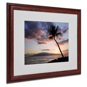 Trademark Fine Art 'Palm Tree Maui' 16 x 20 Wood Frame Art