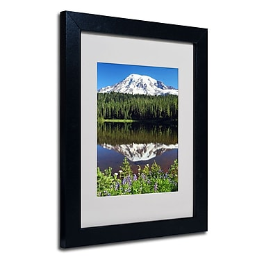Trademark Fine Art 'Rainier Wildflowers'