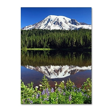 Trademark Fine Art 'Rainier Wildflowers' 30