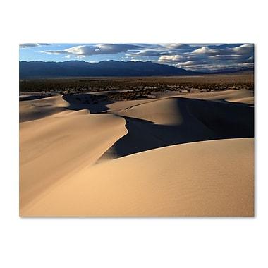 Trademark Fine Art 'Sand Dunes' 14