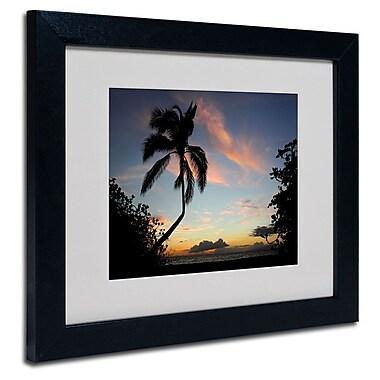 Trademark Fine Art 'Tropical Sunset' 11