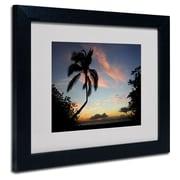 Trademark Fine Art 'Tropical Sunset'