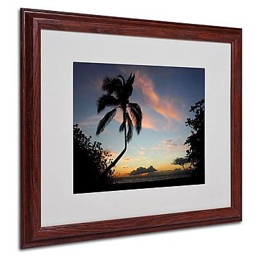 Trademark Fine Art 'Tropical Sunset' 16