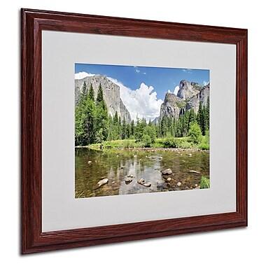 Trademark Fine Art 'Yosemite' 16