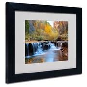 Trademark Fine Art 'Zion Autumn'