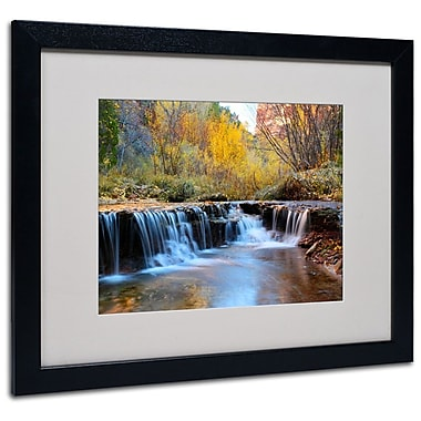 Trademark Fine Art 'Zion Autumn' 16