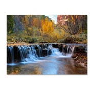 "Trademark Fine Art 'Zion Autumn' 30"" x 47"" Canvas Art"