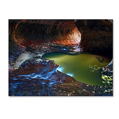 Trademark Fine Art 'Zion Subway' 22