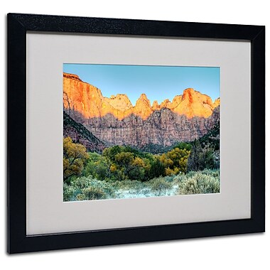 Trademark Fine Art 'Zion Sunrise' 16