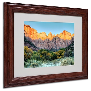 Trademark Fine Art 'Zion Sunrise' 11