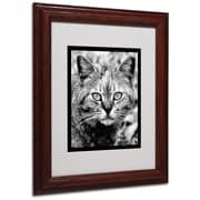 "Trademark Fine Art 'Black & White Pretty Kitty' 11"" x 14"" Wood Frame Art"