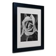 """Trademark Fine Art 'Black & White Rose' 11"""" x 14"""" Black Frame Art"""