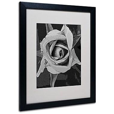 Trademark Fine Art 'Black & White Rose' 16