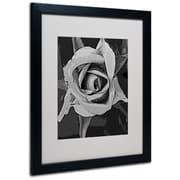 """Trademark Fine Art 'Black & White Rose' 16"""" x 20"""" Black Frame Art"""