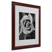 """Trademark Fine Art 'Black & White Rose' 16"""" x 20"""" Wood Frame Art"""