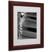 "Trademark Fine Art 'Black & White Spider & Web' 11"" x 14"" Wood Frame Art"