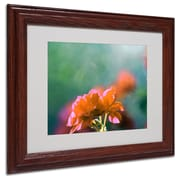"Trademark Fine Art 'Flowers & Sun' 11"" x 14"" Wood Frame Art"