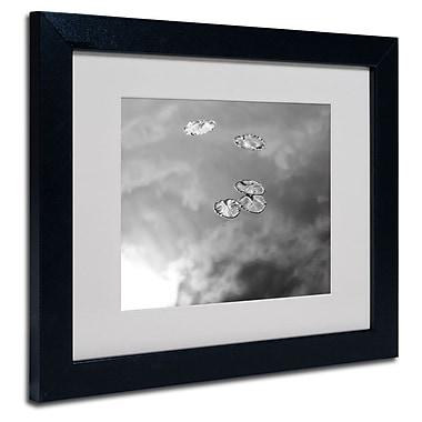 Trademark Fine Art 'Lily Pads & Sky'