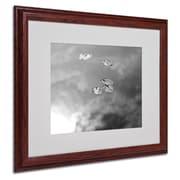 "Trademark Fine Art 'Lily Pads & Sky' 16"" x 20"" Wood Frame Art"