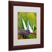 "Trademark Fine Art 'Paradise Color' 11"" x 14"" Wood Frame Art"