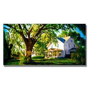"Trademark Fine Art 'Farm House' 16"" x 32"" Canvas Art"