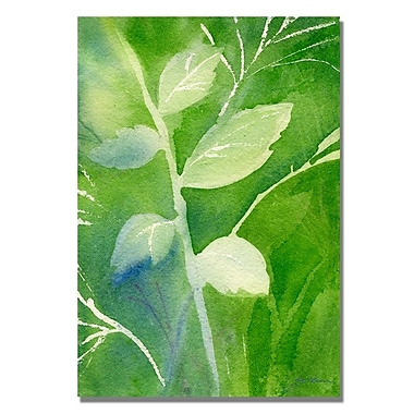 Trademark Fine Art 'Greenery' 18