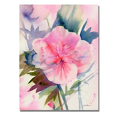 Trademark Fine Art 'Pink Hibiscus Bloom' 24