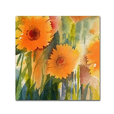 Trademark Fine Art 'Orange Wild Flowers' 24