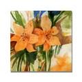 Trademark Fine Art 'Tigerlillies ' 24in. x 24in. Canvas Art