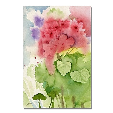 Trademark Fine Art 'Geraniums' 35