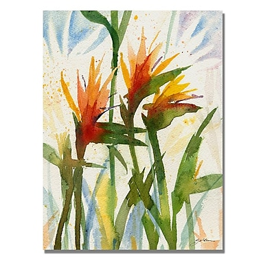 Trademark Fine Art 'Birds of Paradise' 35