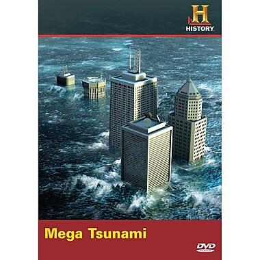 Mega Disasters: Mega Tsunami (DVD)