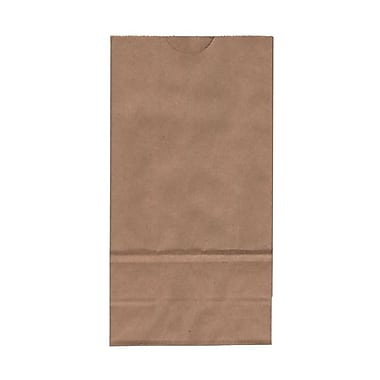 JAM Paper Kraft Paper 8in.H x 4.25in.W x 2.25in.D Small Lunch Bags, Brown, 25/Pack