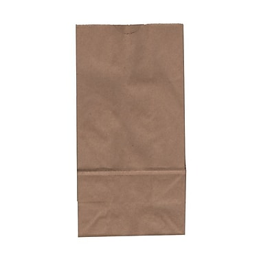 JAM Paper Kraft Paper 9.75in.H x 5in.W x 3in.D Medium Lunch Bags, Brown, 25/Pack