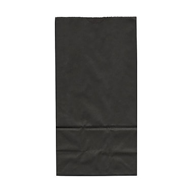 JAM Paper® Kraft Lunch Bags, Medium, 5 x 9.75 x 3, Black, 500/box (691KRBLB)