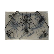 JAM Paper® Plastic Bugs Business Card Case With Round Flap, Clear With Black, 100/Pack