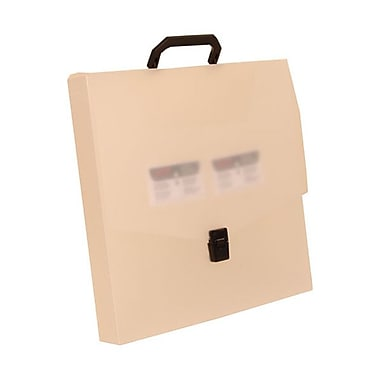 JAM Paper® 13 1/4in. x 13 1/4in. x 1 3/4in. Square Portfolio Case, Clear Frost, 24/Pack