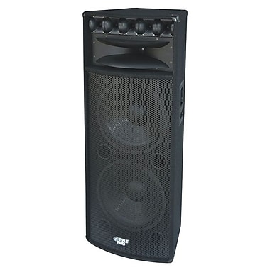 Pyle® PADH215 2000 W 15in. Speaker Cabinet