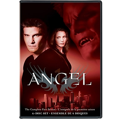 Angel TV: The Complete First Season (DVD)