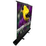 "Elite Screens ® ezCinema Plus Series F84XWV1 Manual Floor Mount Projection Screen, 84"""
