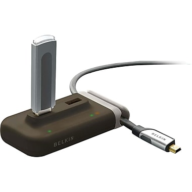 Belkin™ 4 Port USB 2.0 Plus Hub, Brown