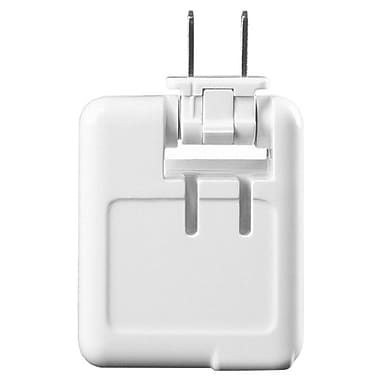 Antec® Dual-Port USB Wall Charger For iPhone/iPad, White
