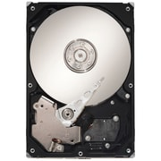 Seagate® Barracuda SV35.5 1TB 7200 RPM 3.5 Surveillance Internal Hard Drive